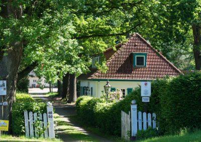 Landwirtschaft_Bremen_17
