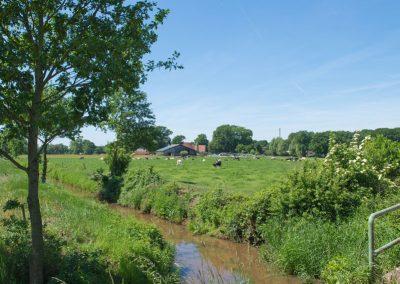 Landwirtschaft_Bremen_22