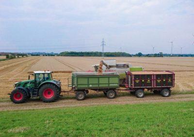 Landwirtschaft_Bremen_1