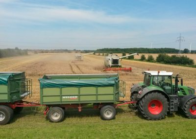 Landwirtschaft_Bremen_3