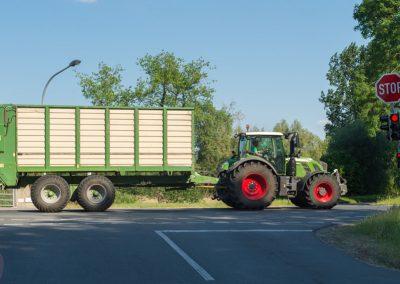 BLV_Landwirtschaft-7942_low