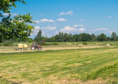 BLV_Landwirtschaft_-7906_low