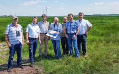 Wiesenvogelschutz dank Landwirte erfolgreich