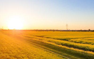 Das lassen wir nicht unkommentiert – Landwirte und Politik