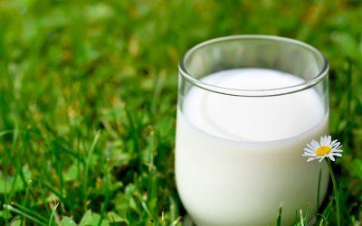 Powergetränk Milch
